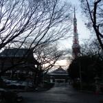 お寺から見る東京タワー