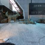 カラフト犬の銅像