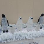 ペンギンイルミネーション
